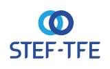 Logo STEF TFE